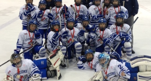Atom AA Dolphins Win Gold in Oakville