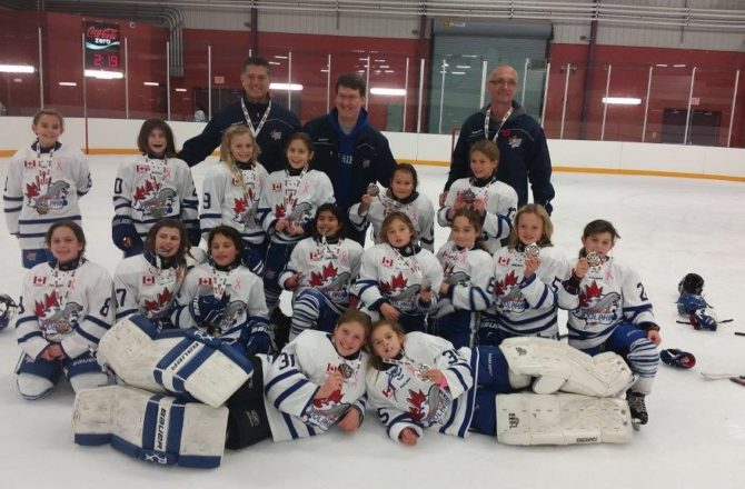Atom BB Team wins the Silver Medal at the 2016 St. Catharines tournament