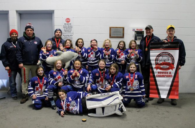 Novice A wins Gold at Leaside Wildcats March Madness Tournament