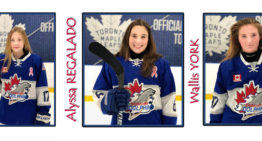 Bantam AA Dolphins to Play in the Ontario Summer Games 2018