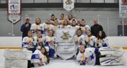 Bantam AA go undefeated to win GOLD at the Stoney Creek BAA Showcase