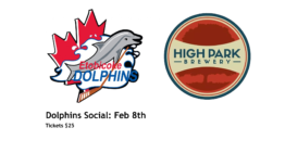 Dolphins First Annual Social