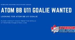 Atom BB U11 Goalie Wanted
