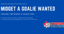 Midget A (u18) Goalie Wanted