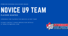 Novice U9 Team Looking for Players